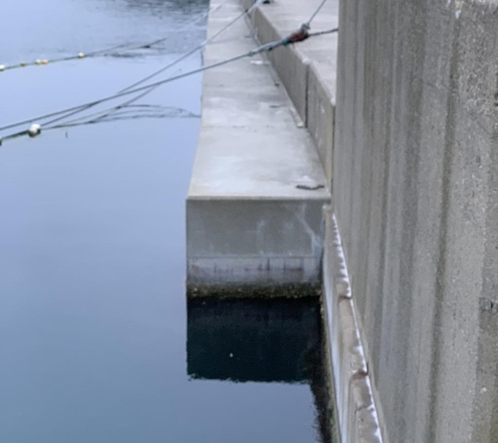 穴釣り 爆釣 大漁 ポイント選び 場所選び 根魚 メバル カサゴ ソイ 堤防の角